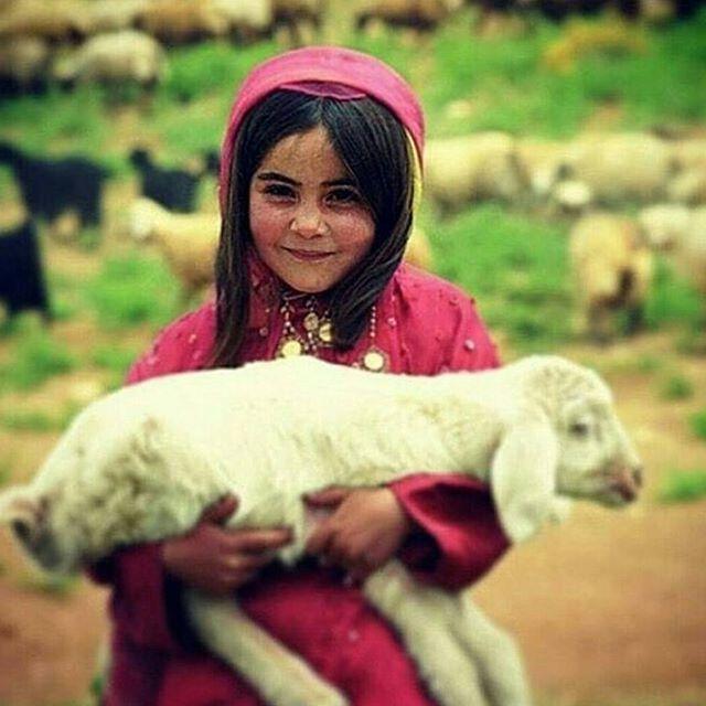 Qashqa'i Nomad Tour